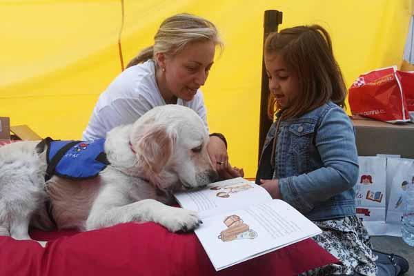 una jornada de lectura con perros de educacioacuten asistida para celebrar sant jordi