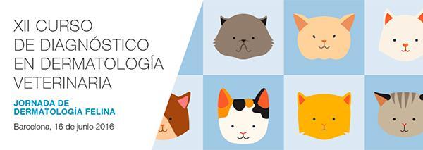 laboratorios letiunivet ultima los preparativos para la nueva jornada delnbspxii curso de diagnoacutestico en dermatologiacutea veterinaria