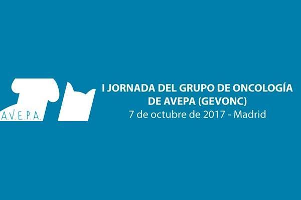 madrid acogeraacute en octubre la i reunioacuten del grupo de oncologiacutea de avepa gevonc