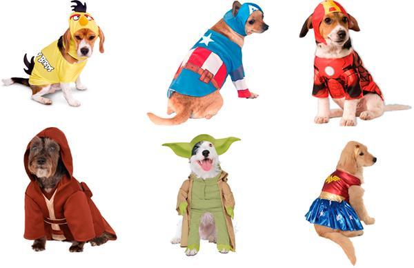 las mascotas tambieacuten se disfrazan en carnaval