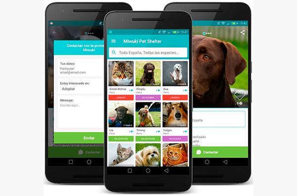 miwuki la app global para la adopcioacuten de mascotasnbsp