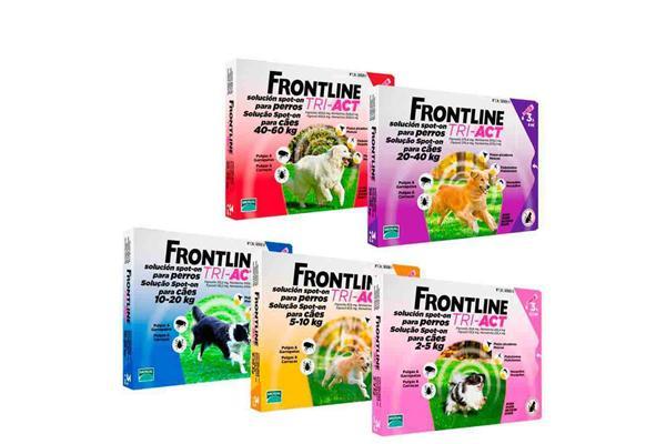 frontline triact amplio espectro de proteccioacuten frente a ectoparaacutesitos vectores de enfermedad