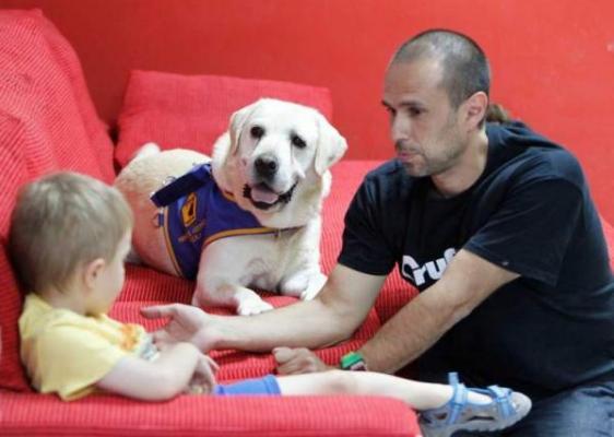 los perros de alerta meacutedica pueden detectar niveles bajos de concentracioacuten gluceacutemica en sangre