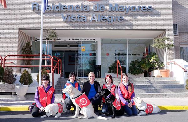 perros con fines terapeacuteuticos para los hospitales colegios y centros de mayores de madrid