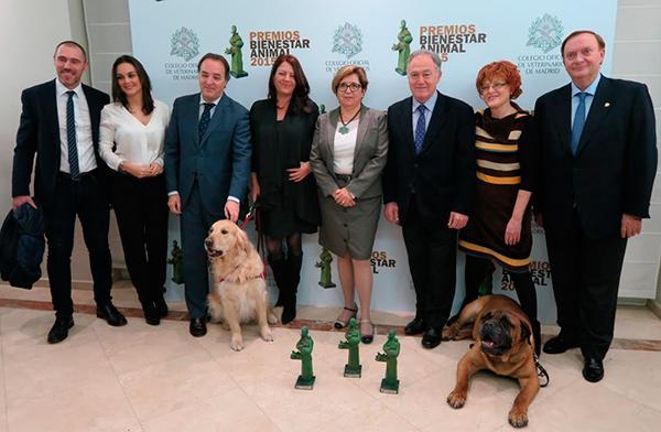 los i premios bienestar animal evidencian que las mascotas mejoran la salud de las personas