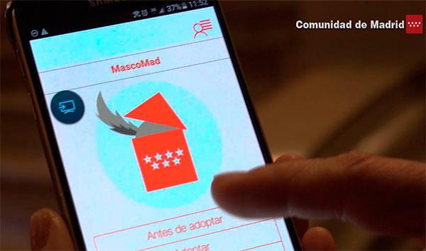 """""""MascoMad"""", la app para móviles con los datos de animales para adoptar en Madrid"""
