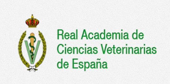 la racve organiza una mesa redonda sobre los retos de la investigacioacuten en ciencias veterinarias