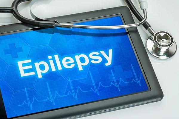 revisioacuten sistemaacutetica del tratamiento de la epilepsia canina