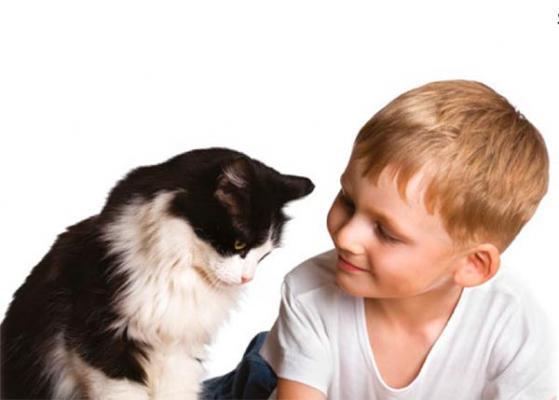 royal canin destaca los beneficios de la terapia asistida con animales en la vida de las personas con autismo