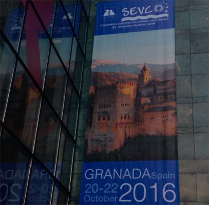 el sevc50 congreso nacional de avepa abre sus puertas