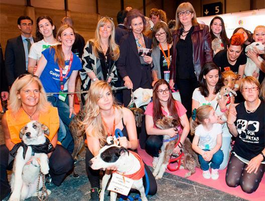 la tenencia responsable y la adopcioacuten de mascotas protagonistas de la feria quotferia 100x100 mascotaquot