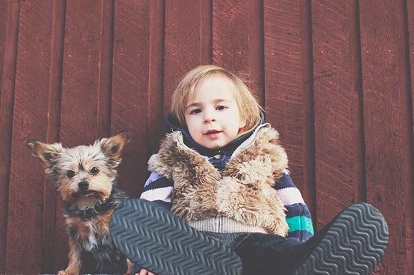 todas las ventajas del cuidado de mascotas en la nintildeez