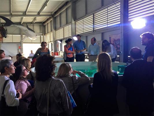 veterindustria descubre las principales liacuteneas de investigacioacuten en sanidad animal del oceanogragravefic de valencia