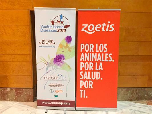 zoetis abandera el simposio del esccap con su campantildea de concienciacioacuten sobre los paraacutesitos como vectores de zoonosis