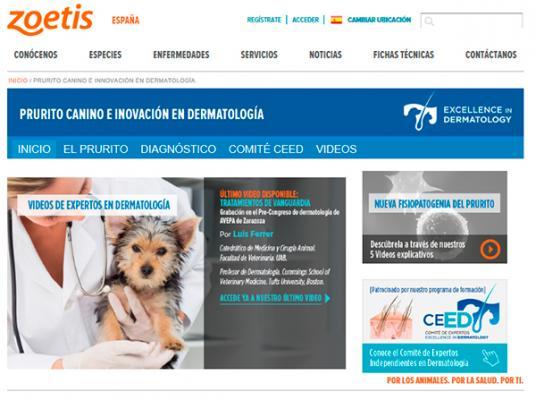 zoetis actualiza su web de prurito canino con un nuevo viacutedeo de expertos en dermatologiacutea