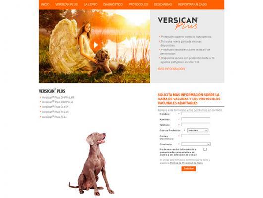 zoetis crea para los profesionales veterinarios una paacutegina web con la gama de vacunas versican plus
