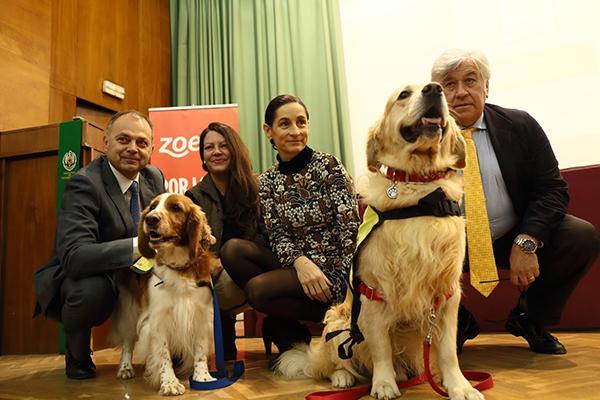 zoetis muestra su apoyo a las intervenciones asistidas con animales iaa