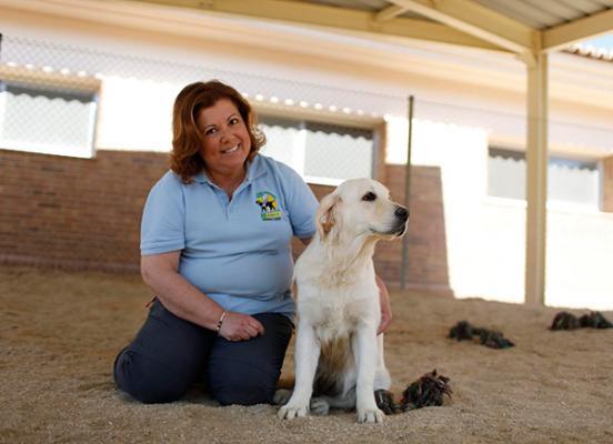 zoetis promueve los beneficios de los animales en la integracioacuten de las personas con discapacidad